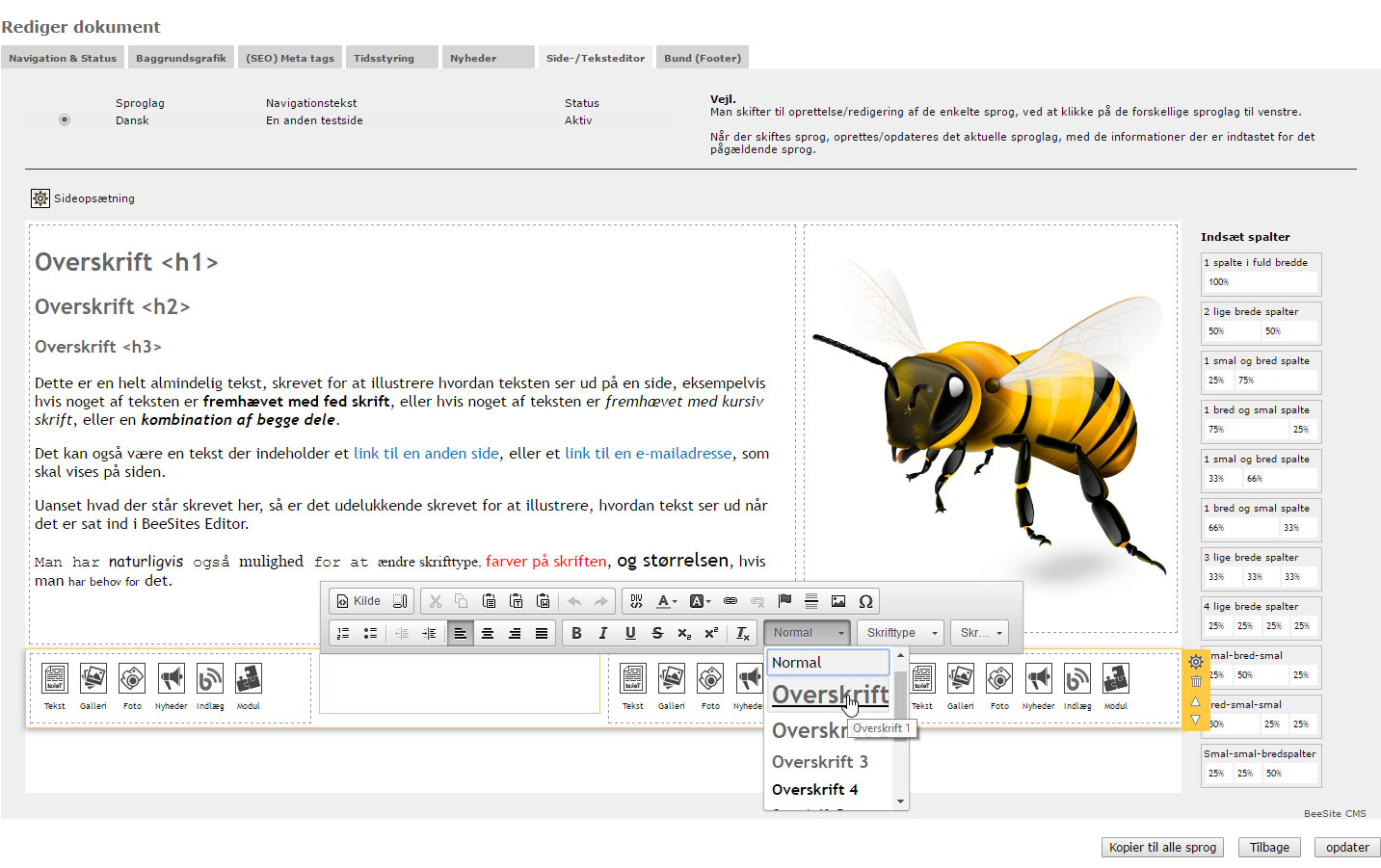 Screenshoot - BeeSite Editor (CMS)